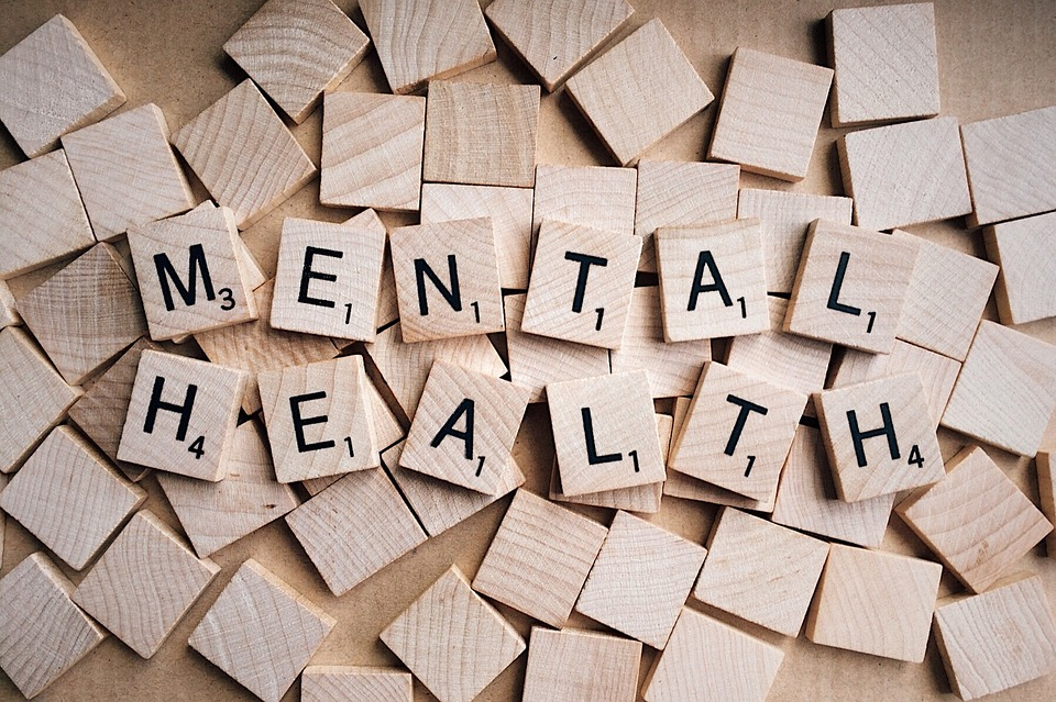Wills and Mental Illness